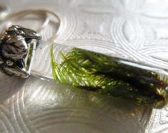Lush,Green Moss Reliquary Terrarium Pendant-Gifts Under 30-Nature Inspired-Symbolizes Unconditional Love, Hope, Harmony,Balance & Compassion