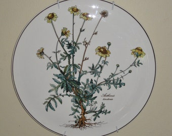 Villeroy and Boch Botannica Cake Plate, Anthemis Tinctoria Luxembourg Yellow Flower Herb Fine China Porcelain