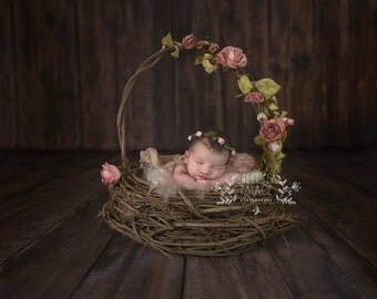 Baby Toddler Child Photography Prop Digital Backdrop for Photographers Rose Basket