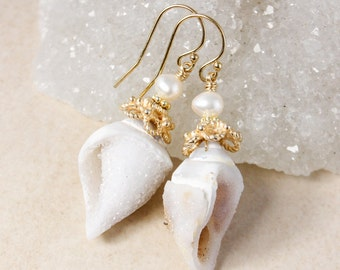 Gold Fossilized Sea Shell Druzy Earrings - White Freshwater Pearls - 14KT GF