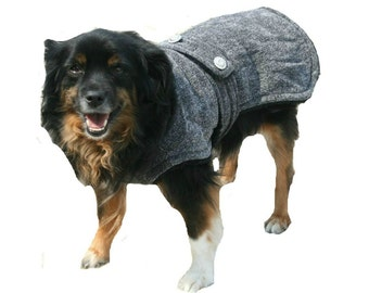 Designer Chihuahua Coat with collar made made just for your dog
