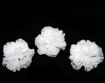 3 White Bargain Carnations