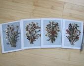 Set of 4 pressed flower artwork greeting cards - dried flower note card - pressed flower card - pressed flower art - dried flower art