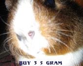 Buy Any Three - 5 Gram Vegan Mineral Eye Shadows/Gifts/Teen Gift/Your Choice
