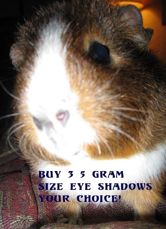 Buy Any Three - 5 Gram Vegan Mineral Eye Shadows/Cruetly-Free|Makeup Gifts/Teen Gift/Your Choice