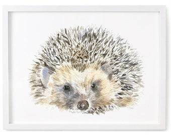 Hedgehog Print of Watercolor Painting, Animal Giclee Print