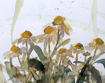 White Coneflowers Original Floral Watercolor Painting by Angela Moulton 8 x 10 inch with 11 x 14 inch White Mat