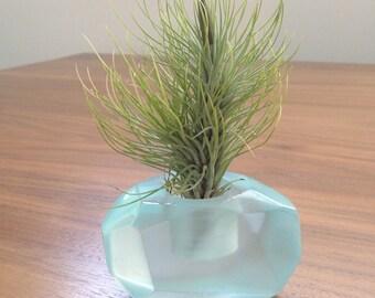 Tillandsia gems aquamarine 'air' color; translucent resin air plant holder, geometric, crystal, great gift