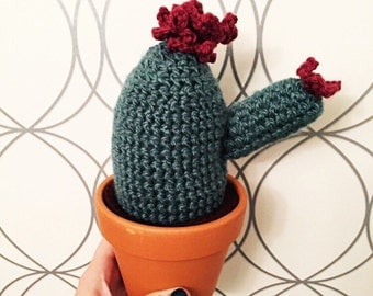 Custom Crochet Flowering Cactus Succulent in Pot