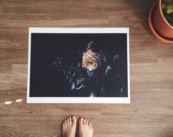 memory 05 // Botanical Photograph Print Poster // 18 x 24 in. Matte