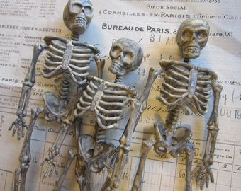 3 plastic skeletons - miniature skeletons - 6 inches tall, bones, skulls, rib cages, halloween decor