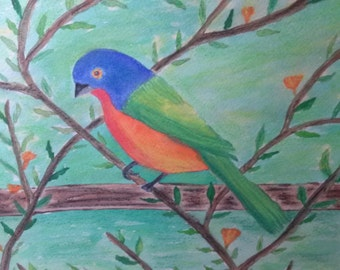 Original Watercolor Painting  of A Painted Bunting Bird