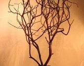 Manzanita Wish / Jewelry / Decor / Centerpiece Tree - Natural - Ready to Ship