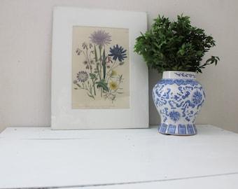 Vintage Field Flowers Print