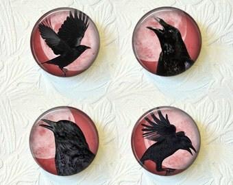 Magnet Set  Crows  Buy 3 Sets Get 1 Set Free  477M