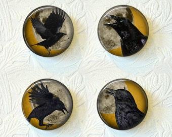 Magnet Set  Crows  Buy 3 Sets Get 1 Set Free  479M