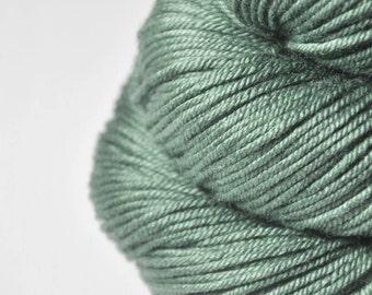 Glass frog - Silk/Merino DK Yarn superwash