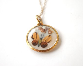 Antique Victorian Pressed Butterfly Charm c.1880s