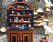 Layaway available dollhouse miniature witch wizard cabinet and owl set
