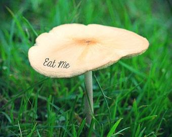 Alice in Wonderland, Photograph, Mushroom, Eat Me, Disney, Nature, Print, Photo, Kitchen, Fairy Tale, Surreal, Quote, Nursery, Gift, book