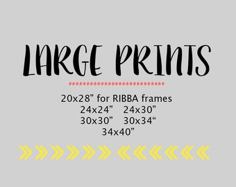 """Large Prints, Large Wall Art 20x28"""" up to 30x45"""""""