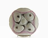 Antique Porcelain Oyster Plate, Registrirt Mark, Germany