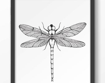 Dragonfly Poster a4 printable