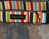 "Dog Collar Xsmall 1/2"" Ready to Ship Sale ""The Multi Stripe"""