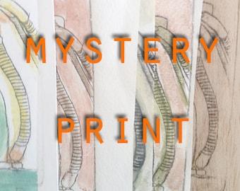 Mystery Test Print