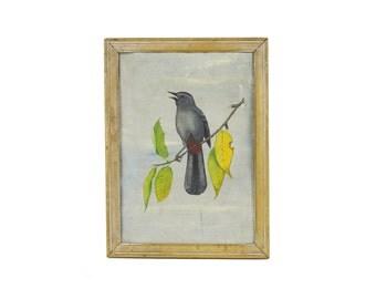 vintage / antique framed hand painted bird portrait