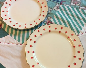 Vintage 2 Piece Set Bread and Butter Plates Blushing Rose Lido W S George Made in The USA ##889