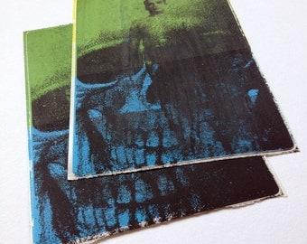 Still: Screen Printed Sticker Art Feat BKS Iyengar And Skull