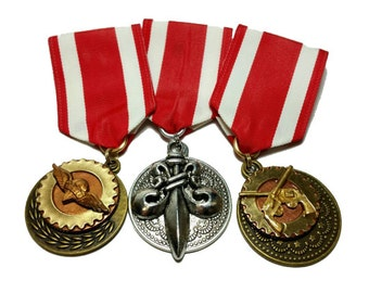 Steampunk Cosplay Medal // Custom DOUBLE CHARM Medallion // Black Red Gold Ribbon