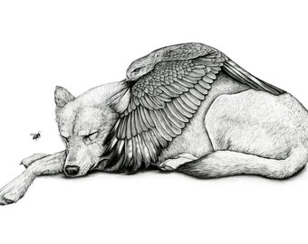 Save You From Yourself - Limited Edition Print of  Wolf and Hawk with the interuption of a bee