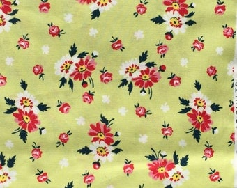 Sweet Ruby DS Quilts Denyse Schmidt floral pale green FQ or more