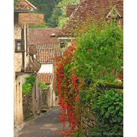 "Fine Art Color Travel Photography of French Village - ""Lane and Ivy in St Cirq Lapopie France"""