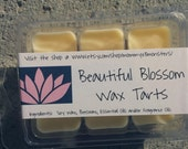 FEBRUARY SPECIAL!!! Beautiful Blossom Soy Blend Wax Tarts (Mulan/Disney Princess)