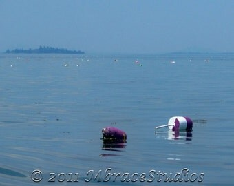 Buoys and Island Photograph - 5x7 inch photo matted to 8x10 inches