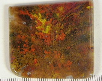 Beautiful Moss Agate Cabochon (AGT2371)