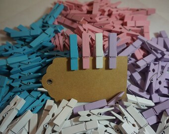20 Coloured Small Wooden Pegs 35mm ~ Pastel ~ PLUS 5M Natural Jute Twine + Post