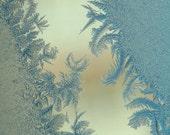 Icy postcards - Fine Art Photograph