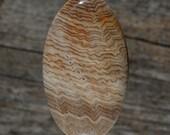 Hells Canyon Petrified Wood Cabochon, Handmade Designer Cabochons by MagicStones