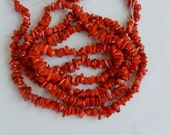 Red bamboo coral chips , Full strand (16 inches) 5-10mm, coral chips, red coral chips