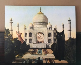 Cat Art, Taj Mahal Art, India, Cat Print, Cat Artwork, Funny Cat Art, Alternate Histories, Taj mahal art