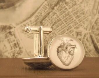 Anatomy Heart  Cuff Links