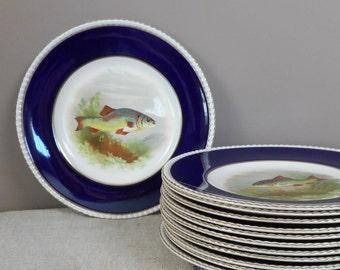 "Set of Twelve Fish Plates Cobalt Rim Fondeville Ambassador Ware England 9"" Serving Dinner Salad Lunch Collectible Home Decor Wall Hanging"