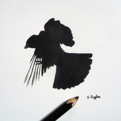 DrawingInDark