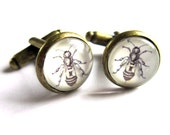 Bee Cufflinks Glass and Antiqued Brass White Sepia Boho Men Shirt Accessories Jewelry
