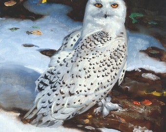Snowy Owl 17 x 11 print (image 12.5 x 10.5) personally signed by artist RUSTY RUST / O-85-P