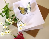 Pop-up Butterfly Card - Clouded Yellow